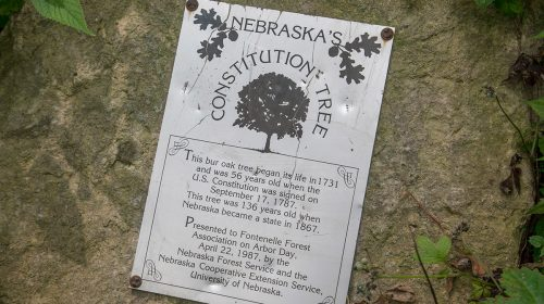 Fontenelle Forest in Nebraska